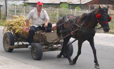 Progetto Romania 1